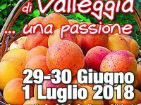 Albicocca di Valleggia… una passione: ritorna a fine mese la manifestazione quilianese con stand degustazioni e gastronomici, musica, danza e… Vespe!