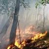 Cumiana bruciano i boschi, estesa la fascia di rispetto entro la quale ci sono i divieti