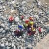 I carabinieri hanno preparato una scheda per cercare di identificare l'uomo che si  è gettato dal ponte di Bibiana