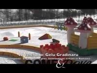 TG WEB | VENERDì: 14/02/2014  Una società della Romania gestirà gli impianti di risalita di Pragelato