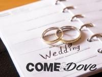 TG WEB | VENERDì: 28/02/2014  Evade per sposarsi