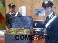 Sequestrata a Oulx una valigia piena di droga a basso costo