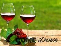 """17 e 18 maggio: """"Viva il Vino"""" nelle vie del centro storico di Pinerolo"""