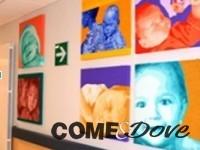 Le opere degli studenti del liceo artistico abbelliscono l'ospedale di Pinerolo
