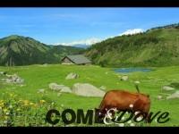 Martedì a Usseaux in frazione Balboutet 56° edizione della rassegna zootecnica