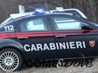 Scoperti due laboratori di cannabis tra Cantalupa e Torino