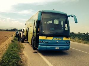 """Valetti M5S: """" I nuovi bus della Sadem non compensano il pessimo servizio"""""""