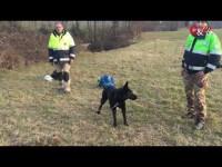 VIDEO | Le operazioni di soccorso della pensionata di San Secondo