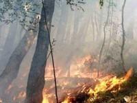 Incendio nei boschi di Perrero