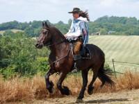Route d'Artagnan: domani la sfilata di cavalli e carrozze