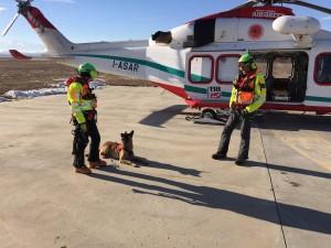 cane accanto elicottero