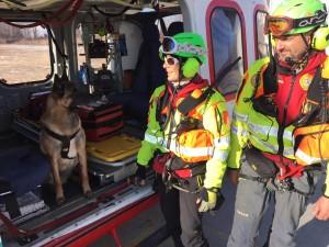cane soccorso alpino