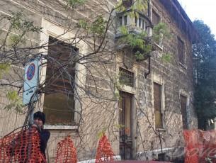 Il Comune ha fatto tagliare le piante che in via Palestro invadevano la strada