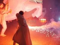 FOTO | I pinerolesi affascinati dalla Notte delle Muse