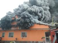 Da capire le cause dell'incendio avvenuto a  Garzigliana in un allevamento di maiali