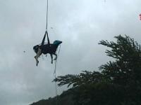 Salvataggio di una mucca ( foto di repertorio)