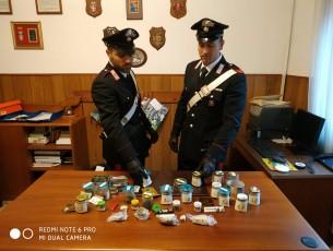 Villafranca, dopo un controllo stradale i carabinieri scoprono una serra per coltivare marijuana