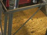 A Pinerolo le arance di Ivrea diventano concime bio