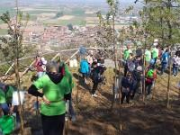 Sulla Rocca di Cavour un albero per ogni nuovo nato nel 2018