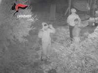 Arrestati dai carabinieri di Pinerolo i ladri che fotografavano le loro vittime che dormivano