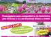 PedalaCavour festeggiando il Giro d' Italia