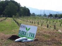 Il Compost Florawiva di Acea Pinerolese al Parco Stura di Torino