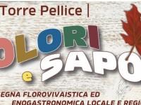 A Torre Pellice domenica si svolge Colori e Sapori