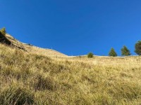Un escursionista morto e uno ferito, il primo a Bourcet e l'altro in val Pellice